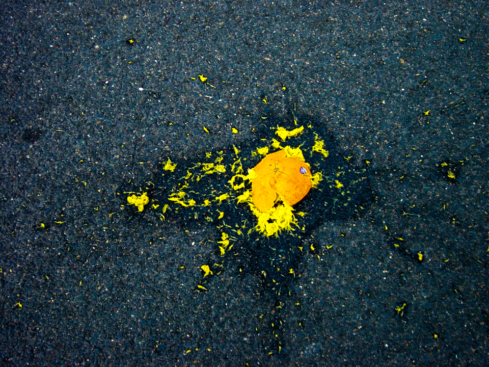 A squashed orange